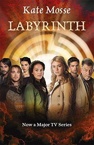9781409138969: Labyrinth
