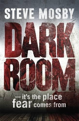 9781409141907: Dark Room