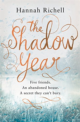 9781409142997: The Shadow Year
