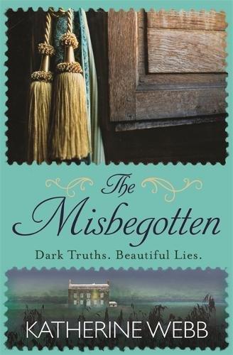 9781409154891: The Misbegotten