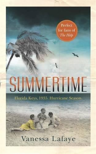 9781409155379: Summertime