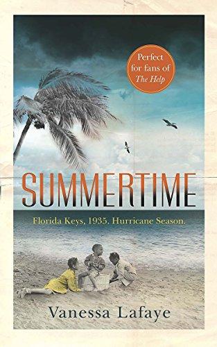 9781409155386: Summertime