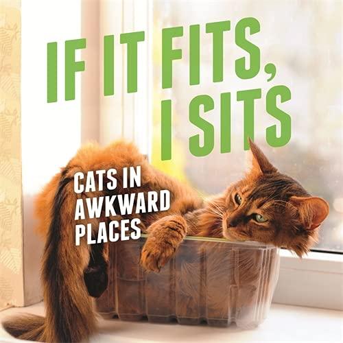 9781409160731: If it Fits, I Sits