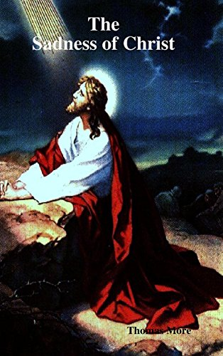 9781409224709: The Sadness of Christ