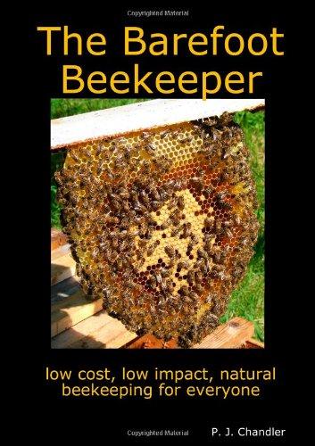 9781409271147: The Barefoot Beekeeper