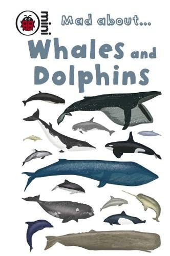 9781409301080: Mad About Whales and Dolphins