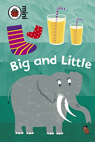 9781409301783: Big And Little (Early Learning)