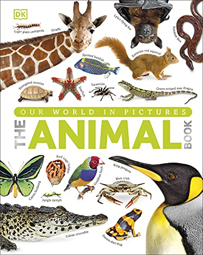 9781409323495: The Animal Book: A Visual Encyclopedia of Life on Earth (Reference)
