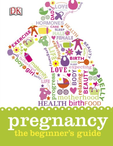 9781409338710: Pregnancy the Beginner's Guide