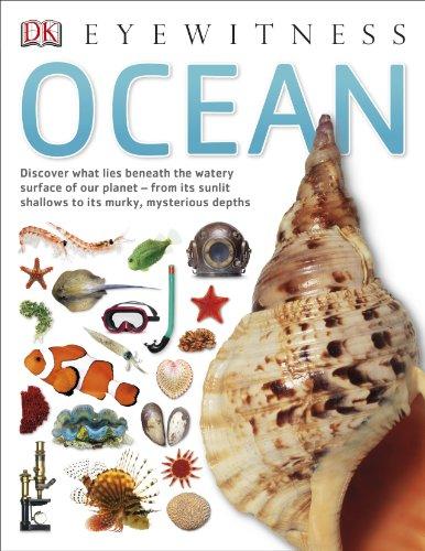 9781409343752: Ocean (Eyewitness)