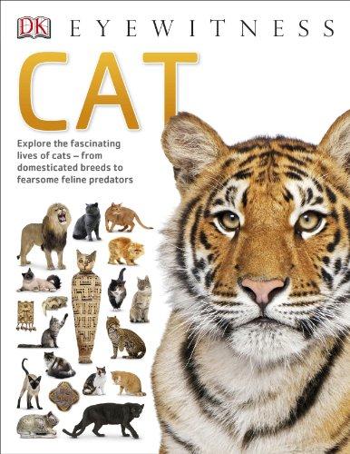 9781409343813: Cat (Eyewitness)