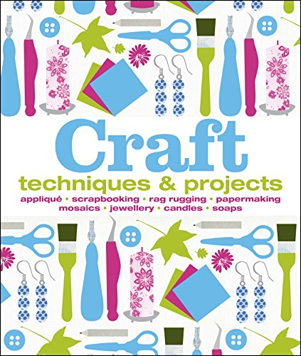 9781409383901: Craft: Techniques & Projects
