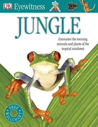 9781409384762: Jungle (Eyewitness)