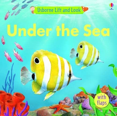 9781409501176: Under the Sea (Lift and Look)