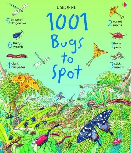 9781409505143: 1001 Bugs To Spot