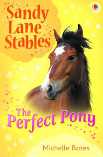 9781409505228: Perfect Pony (Sandy Lane Stables)