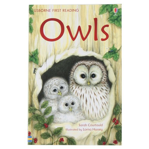 9781409505792: Owls (First Reading Level 4)