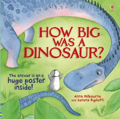 9781409506775: How Big Was a Dinosaur? (Picture Books)