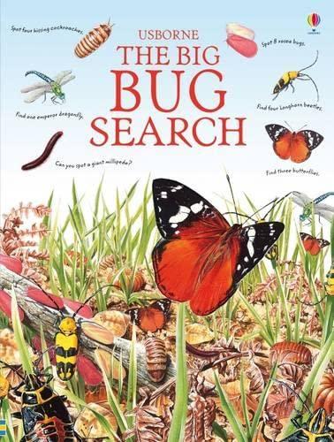 9781409509172: The Big Bug Search (Usborne Great Searches)