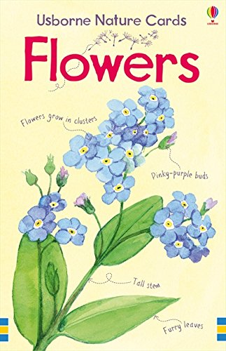 9781409509493: Flowers Usborne Nature Cards (First Spotters Cards)