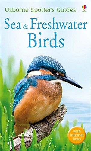 9781409517054: Sea and Freshwater Birds (Usborne Spotter's Guide)