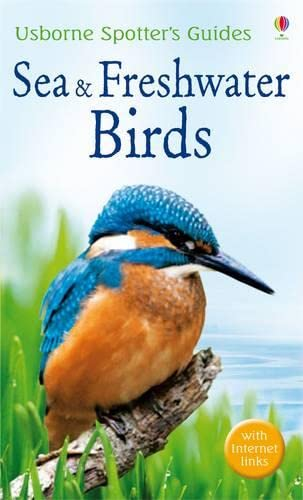 9781409517054: Sea and Freshwater Birds (Spotter's Guide)