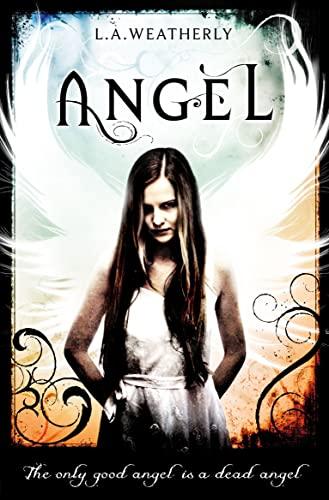 9781409521969: Angel: Book 1