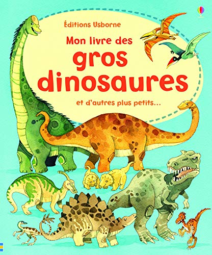 9781409529378: Mon livre des gros dinosaures