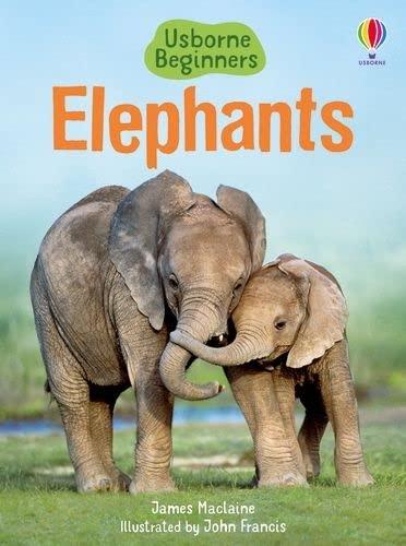 Elephants (Usborne Beginners): Maclaine, James