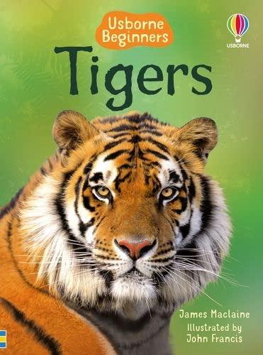 9781409530671: Beginners: Tigers (Usborne Beginners) (Beginners Series)