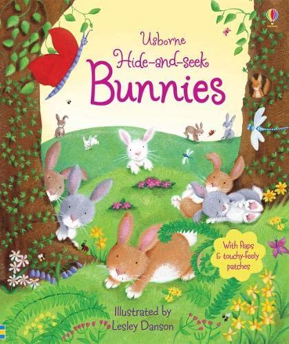 9781409531067: Hide and Seek Bunnies