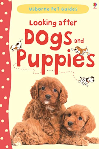9781409532408: Looking After Dogs and Puppies