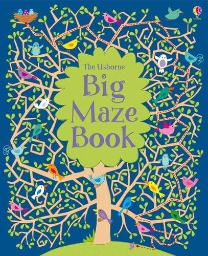 9781409532491: Big Maze Book (Mazes)