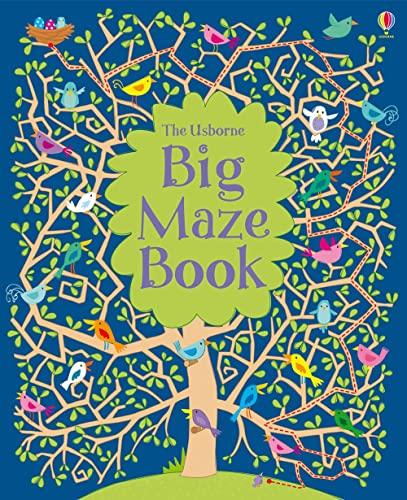 9781409532491: Big Maze Book (Big Maze Books)