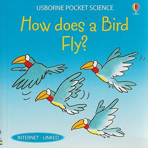 9781409534686: HOW DOES A BIRD FLY? USBORNE POCKET SCIENCE