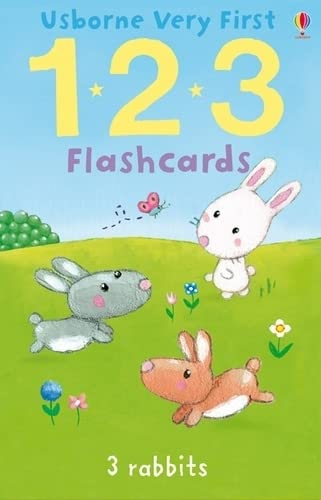 9781409535270: 123 (Very First Flashcards)