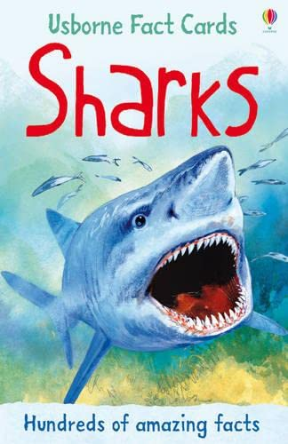 9781409537045: Sharks (Usborne Fact Cards)