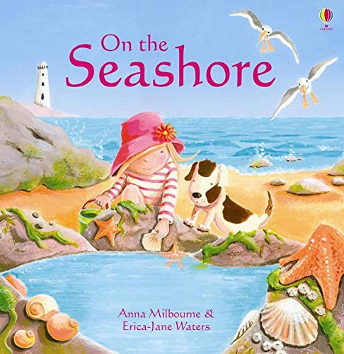 9781409544821: On the Seashore (Picture Books)