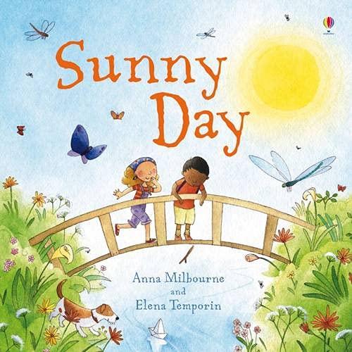 Sunny Day (Picture Books): Milbourne, Anna