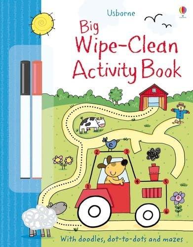 9781409551577: Big Wipe Clean Activity Book
