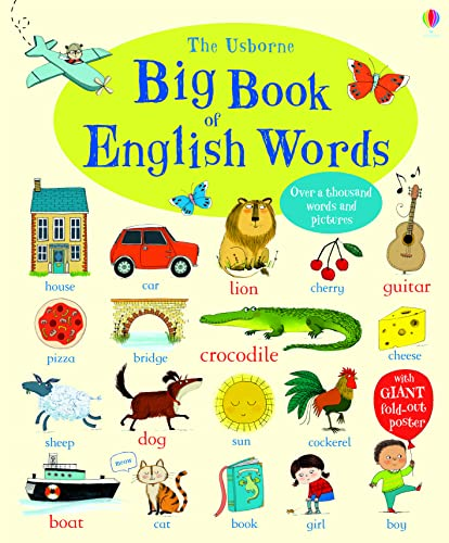 9781409551652: Big book of english words