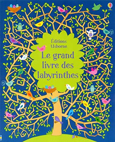 9781409560111: Le grand livre des labyrinthes