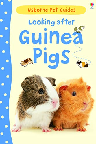 9781409561880: Looking After Guinea Pigs (Usborne Pet Guides)