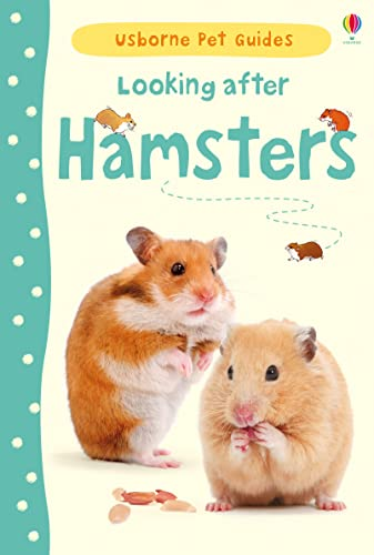 9781409561897: Looking After Hamsters (Usborne Pet Guides)