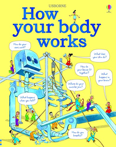 9781409562900: How Your Body Works