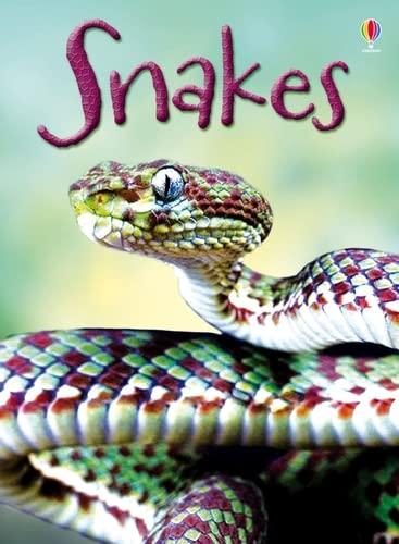 9781409565253: Snakes (Beginners) (Beginners Series)