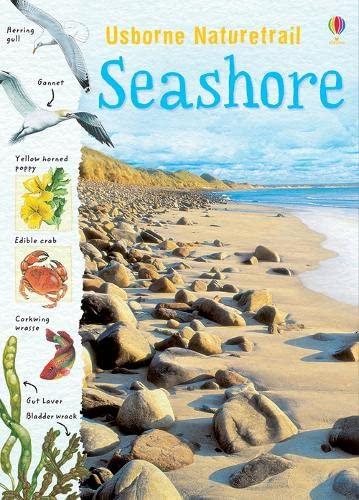 9781409566274: Seashore (Naturetrail)
