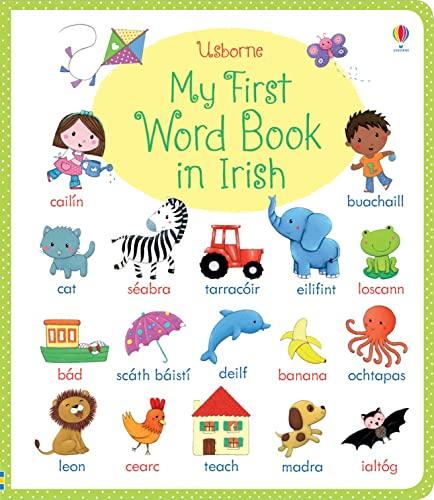 9781409570493: My First Word Book in Irish