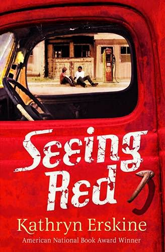 9781409570509: Seeing Red