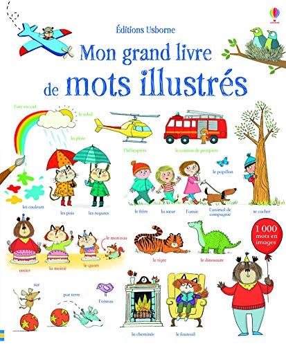9781409577218: Mon grand livre de mots illustrés
